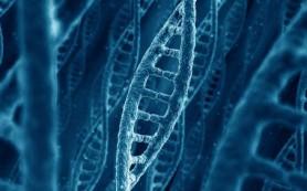 Исследование: первая ДНК могла появиться в результате счастливой случайности