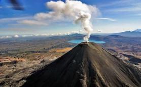 Ученые: вулканы в Сибири спровоцировали вымирание животных на Земле