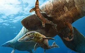 Мозазавры рожали в море