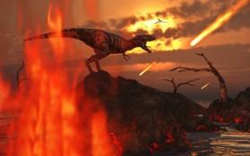 Ученые хотят попасть к астероиду, убившему динозавров