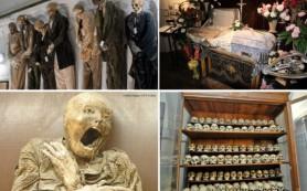 Самые ужасные музеи мира