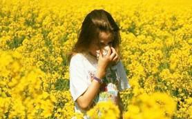Правильное питание при сенной лихорадке