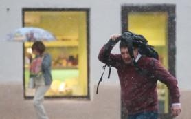 Ученые: холодная погода убивает в 17 раз больше людей, чем жара