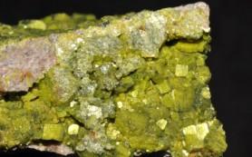 Образец урана 40-летней давности ставит под сомнение научную теорию эволюции человека