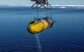 В Приморье создадут кластер подводной робототехники