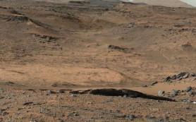 Стойкие бактерии размножаются под раскаленными камнями в пустыне Мохаве