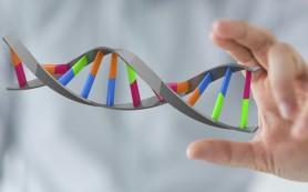 Генетики обнаружили необычную «пятую букву» ДНК в геноме мышей
