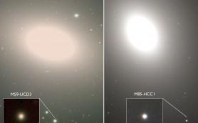 Студенты открывают самые плотные из известных науке галактик
