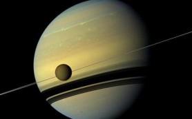 Что могла бы представлять собой внеземная жизнь? Ученые высказывают свои догадки