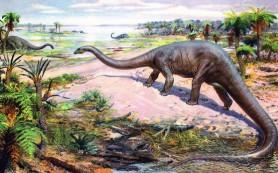 Бронтозавры возвращаются