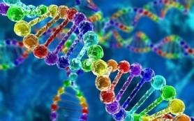 Обнаружено более 40 новых импринтированных генов