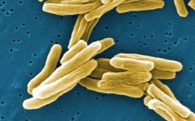 Препарат против язвы желудка защищает от туберкулеза