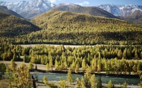 Экологи обнаружили вредные соединения в самых заповедных местах Земли