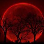 """В сентябре произойдет полное затмение """"суперлуны"""""""