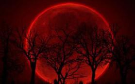 В сентябре произойдет полное затмение «суперлуны»