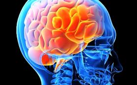 Магнитная стимуляция мозга подавляет веру в сверхъестественное