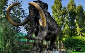 Кожа мамонта, найденная в Якутии, будет использована для клонирования