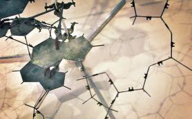 Биологи нашли совершенно новый, «не нобелевский» механизм ремонта ДНК