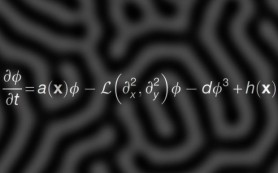 Математики усовершенствовали уравнение полосатости тигров и рыб