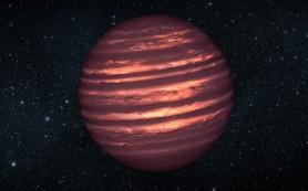 Половина гигантских экзопланет оказалась звездами