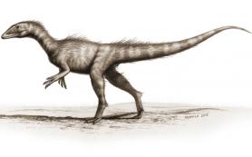 Палеонтологи обнаружили, возможно, самого древнего динозавра юрского периода