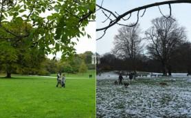 Зимой и летом мозг работает по-разному
