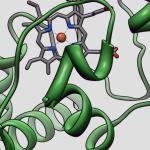 Химики нашли встраивающий кремний фермент
