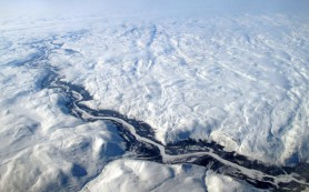 Российские ученые «оживили» амеб из вечной мерзлоты Арктики