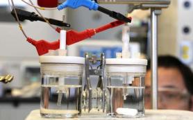 Химики создали батарейку, работающую по принципу фотосинтеза