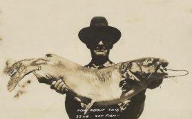 Химики придумали перчатки для ловли рыбы