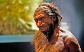 Неандертальцы вымерли из-за «африканских» болезней?