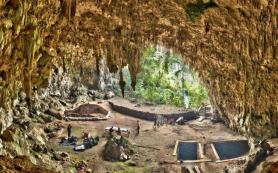 Ученые выяснили, что «хоббиты» из Индонезии вымерли раньше, чем считалось