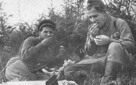 Константин Симонов и Алексей Сурков: Ты помнишь, Алеша, дороги Смоленщины?