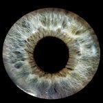 Google запатентовала установку линзы уколом в глаз