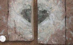 Неизвестный метеорит обнаружен в каменоломне, в Швеции