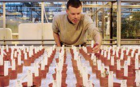 Культуры, выращенные в «марсианском» грунте датскими учеными, пригодны в пищу