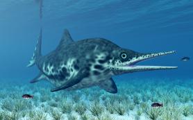Палеонтологи открыли два новых вида ихтиозавров