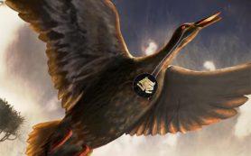 Найден самый древний вокальный орган птицы