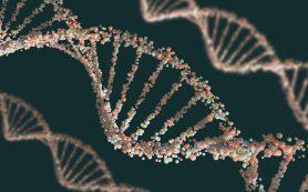 Найдены особенности в структуре РНК-комплекса