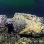 На Балтике нашли затонувший корабль с сотнями непочатых бутылок