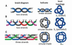 Химики скрутили рекордно сложный молекулярный узел