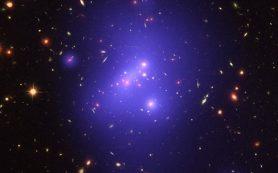 Об эволюции массивных скоплений галактик