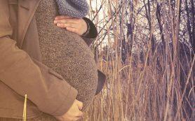 Материнство меняет мозг