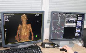 Ученые впервые просканировали мумий из Эрмитажа