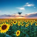Ионный гель поможет дрону опылять растения
