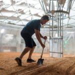 Ученые вырастили картофель в «марсианском» климате