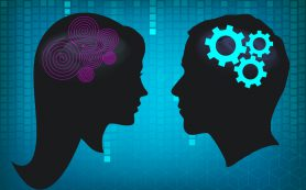 Ученые снова не нашли значительных различий мужского и женского мозга
