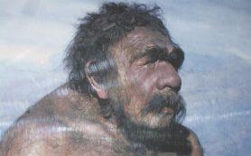 Неандертальцы могли быть перфекционистами