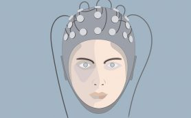 Обнаружена область мозга, ответственная за сновидения