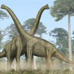 Почему у гигантских динозавров не ломался позвоночник